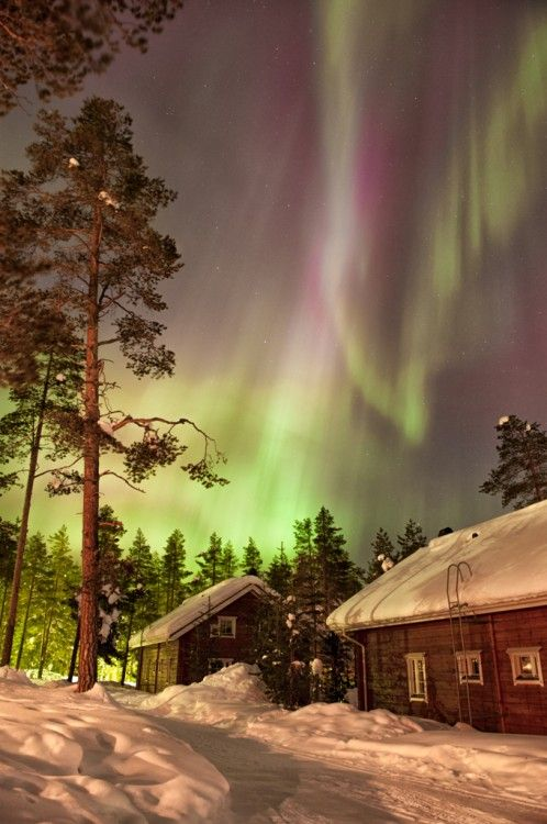 Northern Lights in Sweden ~ stunning photo by Kristin Repsher