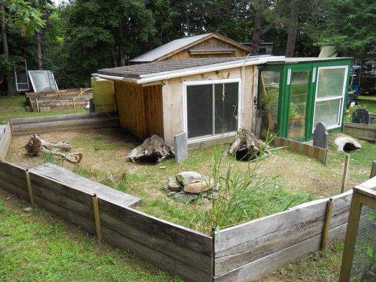 Sulcata tortoise pen new tort shed and pen for sulcata - House habitat ...