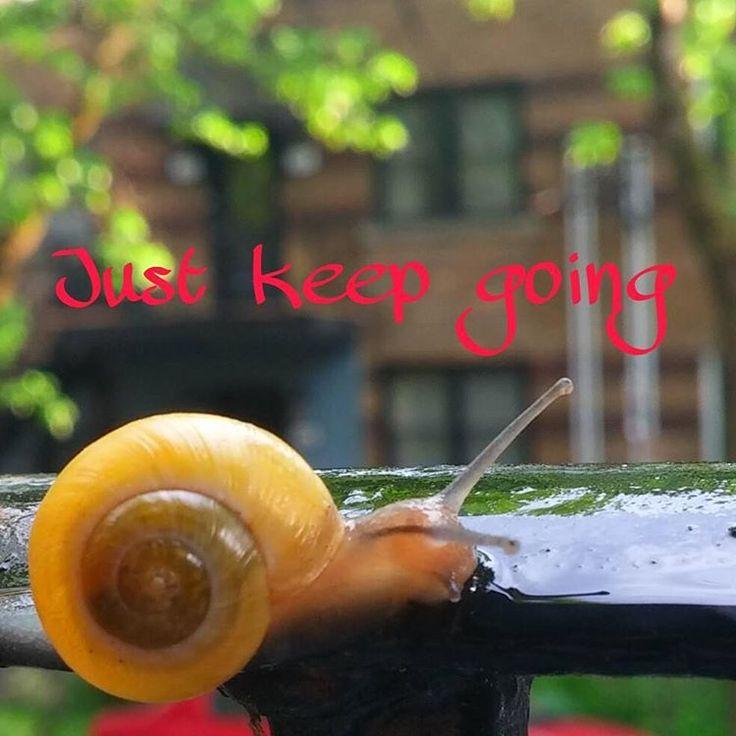 Un pas à la fois #patience #perseverance #keepgoing #slowlybutsurely