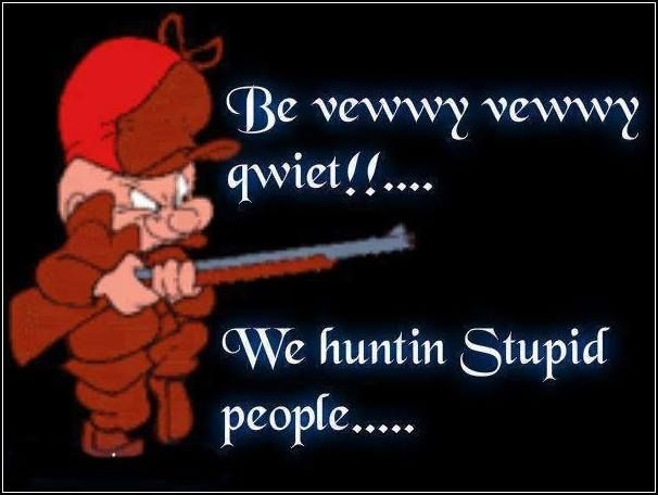 stupid people funny quotes quote lol funny quote funny quotes humor elmer fudd