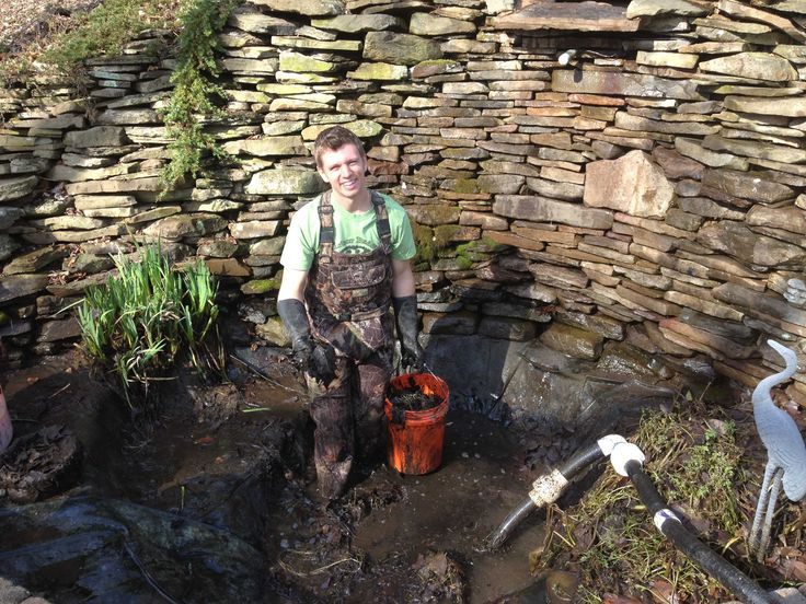 22 best pond cleaning maintenance baltimore maryland for Fish pond cleaning service
