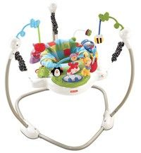 Wish | Fisher Price Discover 'n Grow Baby Jumperoo Play Bouncer | W9466