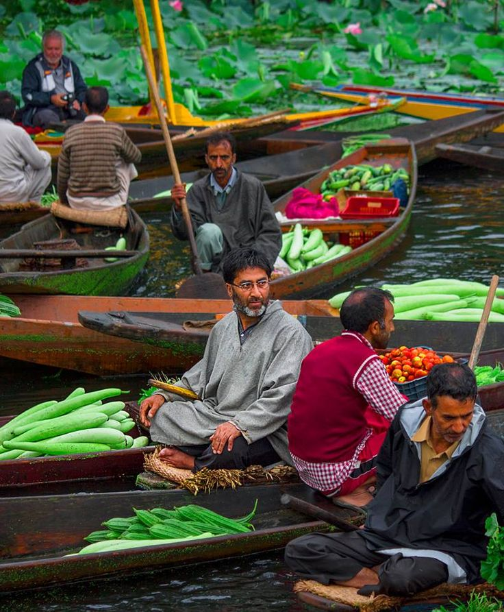 Rishabh Ohri Dal Lake vegetable market Srinagar (INDIA) Aug - 2014