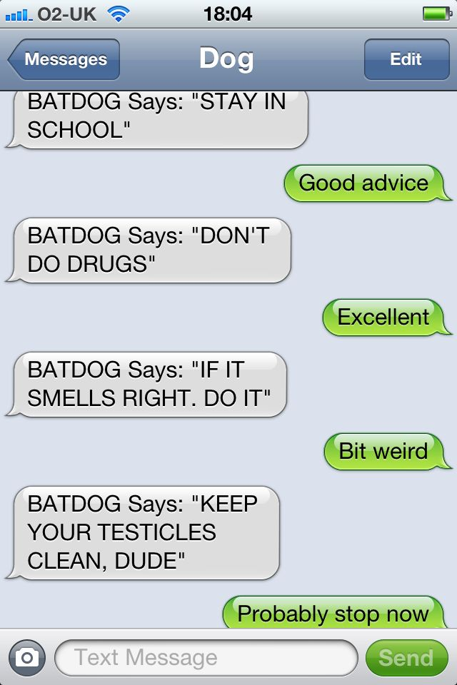 Texts from Dog: Funny Texts, Batdog Advice, My Fav Website, Funny Dogs, Animal Texts, Dogs Things, Dogs Humor, Dogs Texts, Giggles