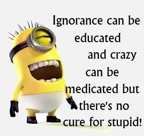 Ignorance Can Be Educated And Crazy Can Be Medicated But Theres No
