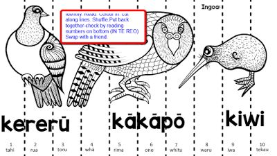 Manu maaori.. our native birds