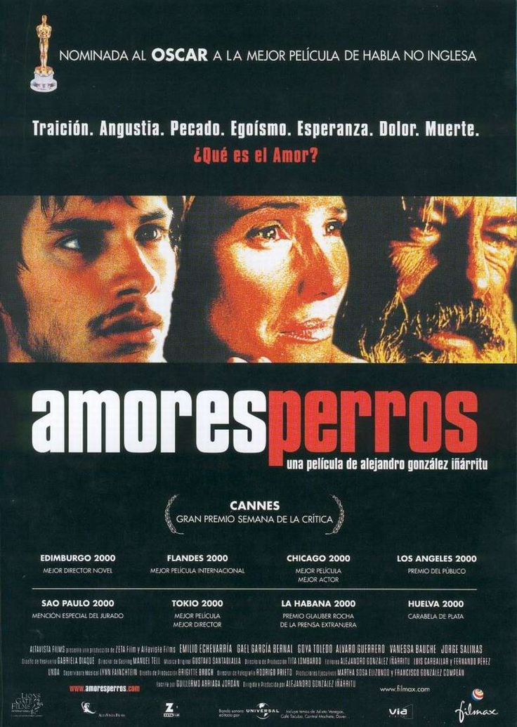 Amores perros :: Alejandro González Iñárritu, 2000. Well actually I loved the other two of the death trilogy too, 21 grams and Babel. However, Amores Perros is just that kinda film you feel yourself in.