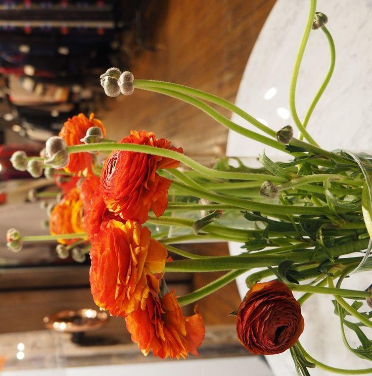 Dalla nostra fioreria uno dei fiori tipici di questa stagione: il ranuncolo, disponibile in tanti colori. Felice fine settimana a tutti