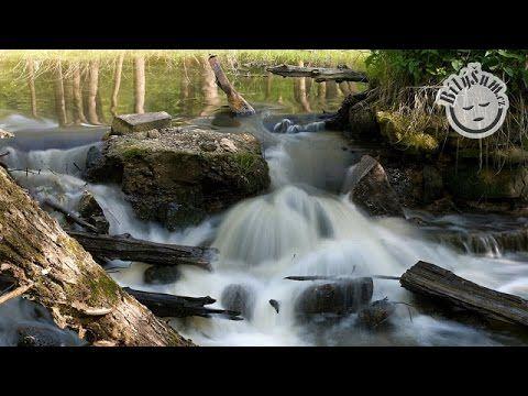 BílýŠum.cz - uklidňující zvuky přírody: řeka tekoucí přes jez a ptačí zpěv