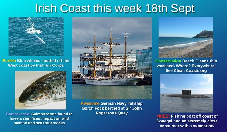 News and events happening on the Irish Coast