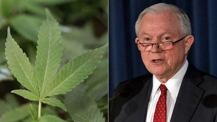 Attorney General to end policy that allowed legal pot to flourish