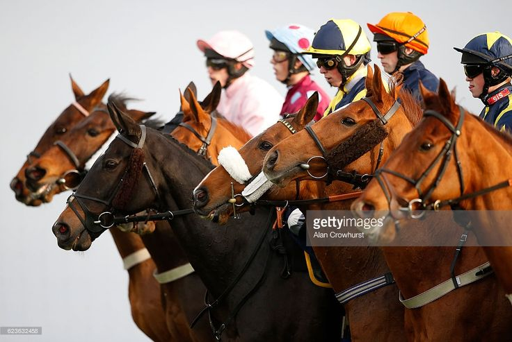 Runners line up for the start of The 188Bet Handicap Steeple Chase at Chepstow Racecourse on November 16, 2016 in Chepstow, Wales.