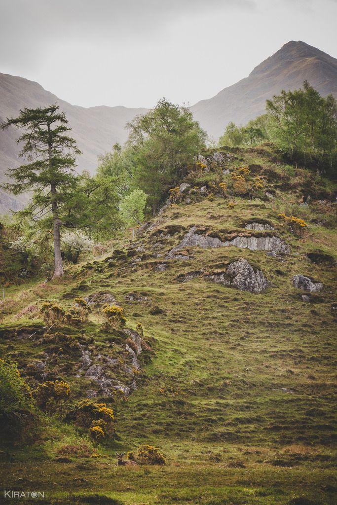 Fotografischer Trip in die Highlands & durchs 1. Halbjahr 2017