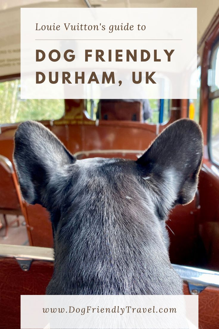 DOG FRIENDLY DURHAM, ENGLAND Dog friends, Dog adventure