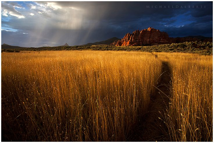 Path to Heaven by Micheal Dalberti... in Zion National Park... one of the places I simply <3.