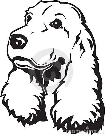 cocker-spaniel-illustration-20140870.jpg