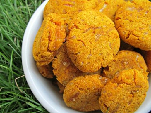 (wheat and gluten-free) cheesy pumpkin dog treat/biscuit recipe