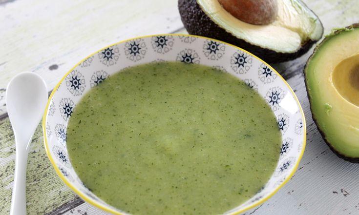 Im Sommer ist Zucchini Hochsaison. Der Zucchini-Avocado-Brei ist vegetarisch und liefert durch die Avocado wertvolle ungesättigte Fettsäuren.