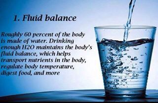 1. Fluid Balance