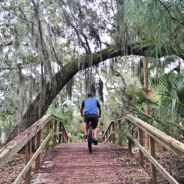 13 Best Skidaway Island Savannah Ga Images On Pinterest