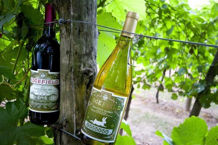 Edgefield Winery Tasting Room Winery tasting room, Wine