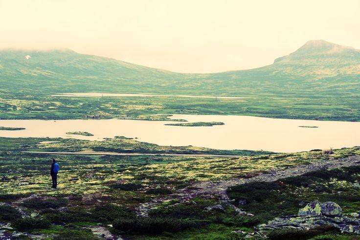 Wonderfull Norway - Muen
