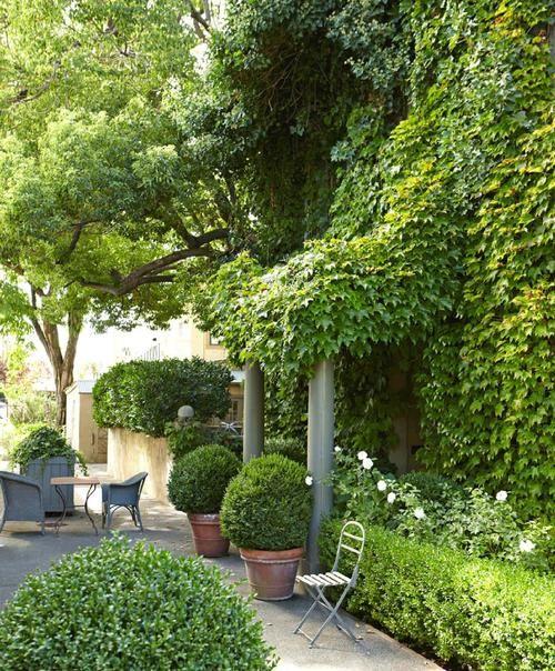 21878 best green white landscaping images on pinterest