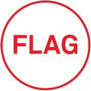 FLAG - Everything