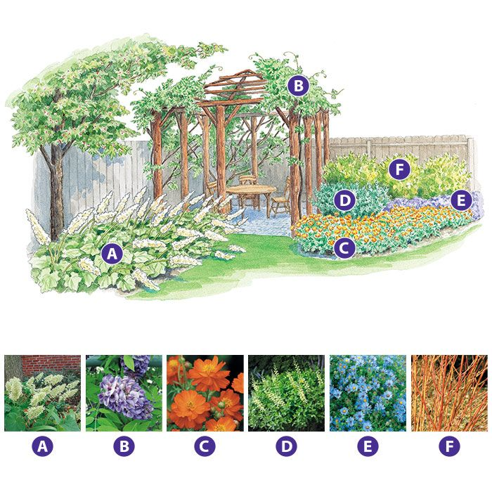 Private Small Garden Design: 97 Best Images About Garden Design Plans On Pinterest