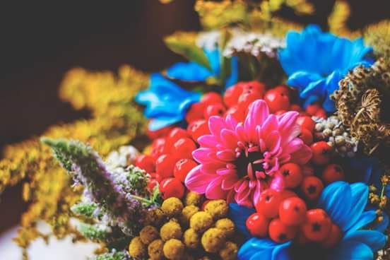 tak lekko płynie w nas to lato jakby biedronki nim powoziły w zaprzęgu jeszcze polne kwiaty lekko schylają się do zimy A. Ziemianin