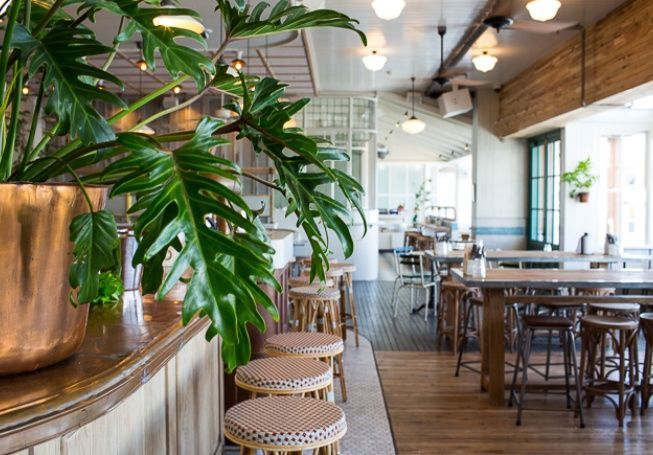 Papi Chulo by Merivale | Manly Wharf - Food & Drink - Broadsheet Sydney