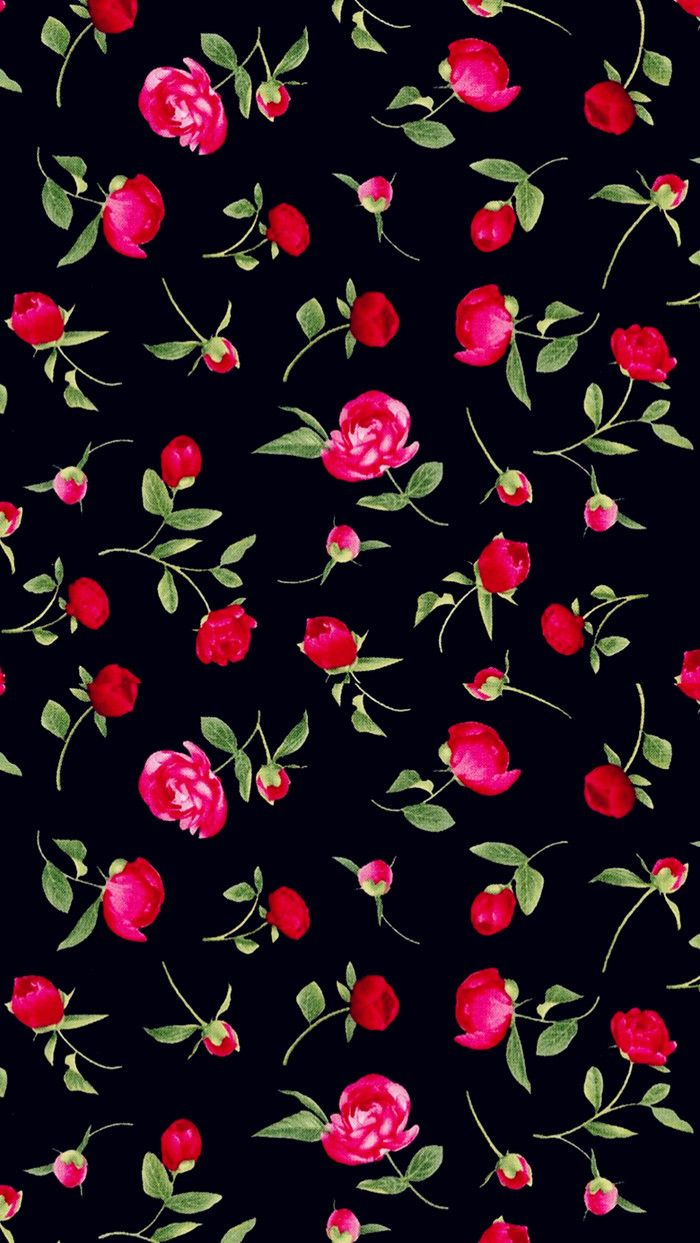 Wallpaper iphone black red - Roses On A Black Background Wallpaper For Iphone