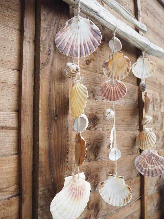 Sea Shells Decor Sea Shells Shells Big Shell