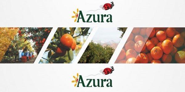 Azura Group Recrute 3 Profils Responsables Import Recrutement Adjoint Directeur Dreamjob Ma Offre Emploi Recrutement Site Emploi