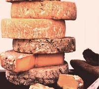 Cheese lovers tour of Tasmania