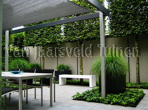 Designtuin met strak geknipte leibomen en een exclusieve maatwerk schutting design - Kleine designtuin ...