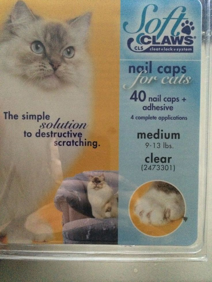 Soft Claws Nail Caps Medium Clear 40 pack Cat Claws #SoftClaws
