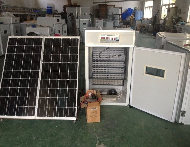 Source Digital automatic 440 chicken egg incubator with solar power panel and battery on m.alibaba.com