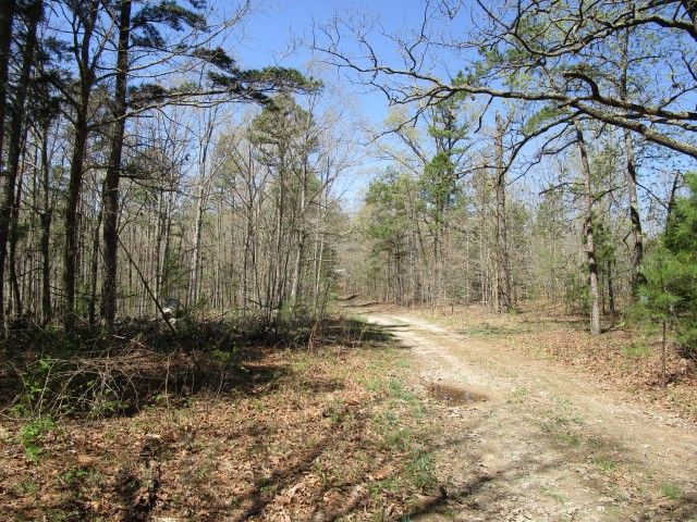 Land for sale in Southern Missouri. This is 40 Acres m/l - Joins 1000s of acres of government land on 2 sides, is mostly wooded with nice creek running through the bottom land. Good road going into property and abundance of wildlife! Great acreage to hunt or build. This property is located in Shannon County, just off Airport Road, Eminence, Missouri. It is just a short drive to Eminence, Jacks Fork River and the Cross Country Trail Rides in Eminence MO