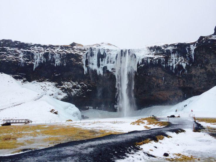 Must See Iceland : Seljalandsfoss waterfall
