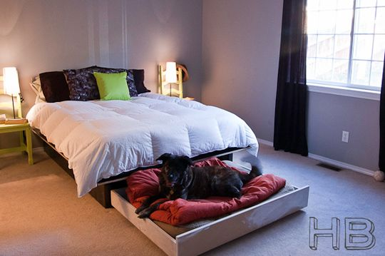 Brilliant! DIY hidden sliding dog bunk. Would be awesome but I don't think all the beds we'd need would fit!