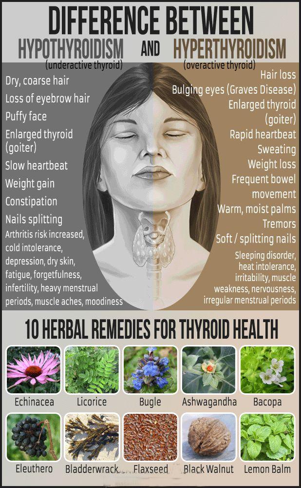 5 Foods that May Help Ease Hyperthyroidism Symptoms