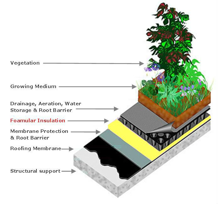 Green Roof using Foamular Extruded Polystyrene