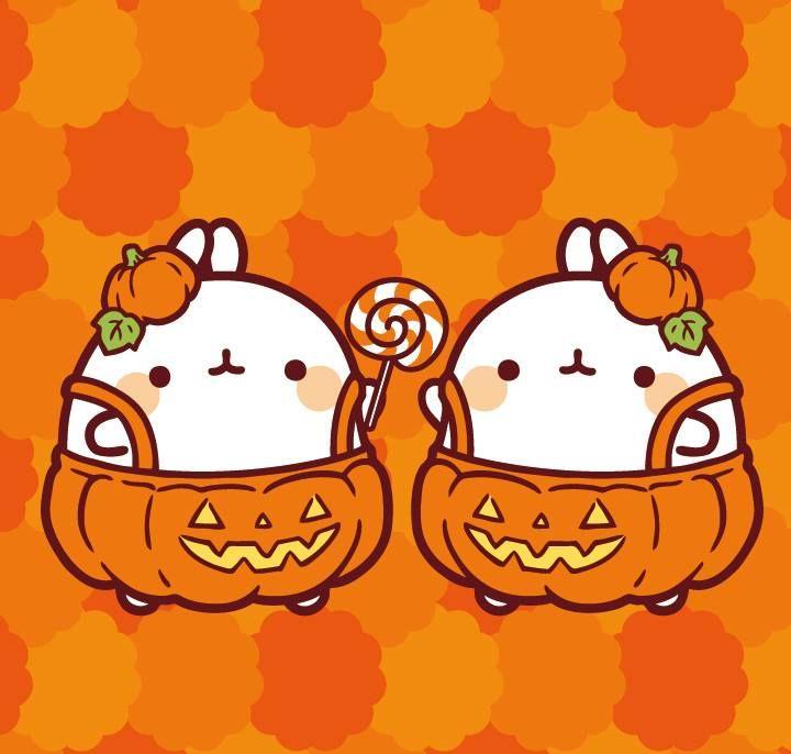 Molang Halloween Cute Kawaii Drawings Cute Kawaii Animals Kawaii Wallpaper