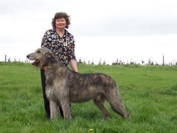 Faye Rogers Animal Communication New Zealand About