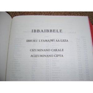Afrikaans Tonga Bible / IBBAIBBELE Ibbuku Lyamajwi Aa-leza - Cizuminano Cakale Acizuminano Cipya / Bible Society of Zambia 1990 - 052   $79.99