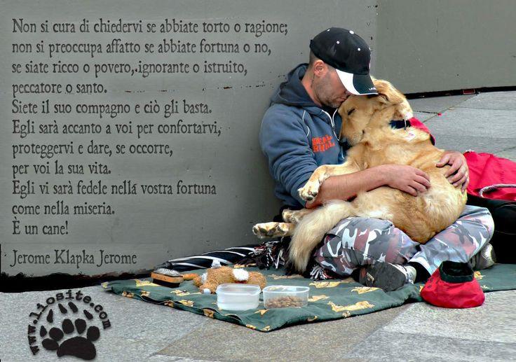 Non si cura di chiedervi se abbiate torto o ragione;  non si preoccupa affatto se abbiate fortuna o no,  se siate ricco o povero,  ignorante o istruito,  peccatore o santo.  Siete il suo compagno e ciò gli basta.  Egli sarà accanto a voi per confortarvi, proteggervi  e dare, se occorre, per voi la sua vita.  Egli vi sarà fedele nella vostra fortuna come nella miseria.  È un cane!  Jerome Klapka Jerome