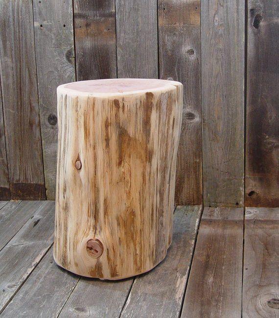 Pin Pa Tree Stumps