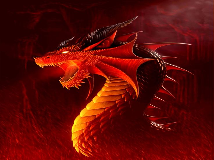red dragon wallpapers hd