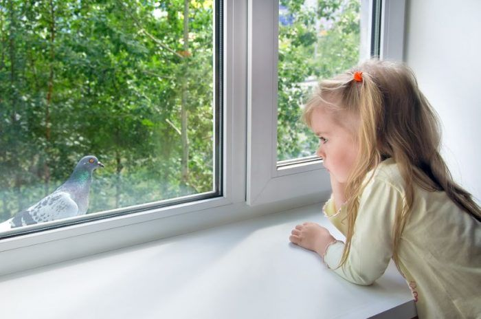 Psicología infantil: 5 señales que te indican que debes acudir a un psicólogo infantil